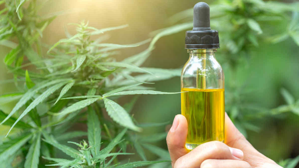 The CBD Shop with the best service, the best variety, and the best prices